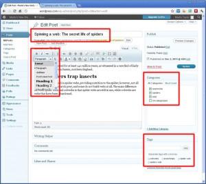 search-cms-editor-800w