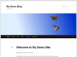 My Demo WordpPress Blog