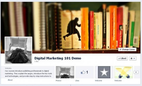 Demo Facebook Page